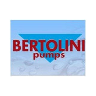bertolini pumps