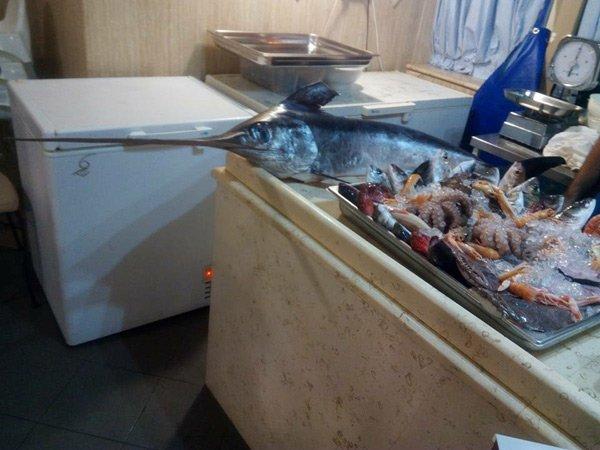 pesce fresco sul bancone
