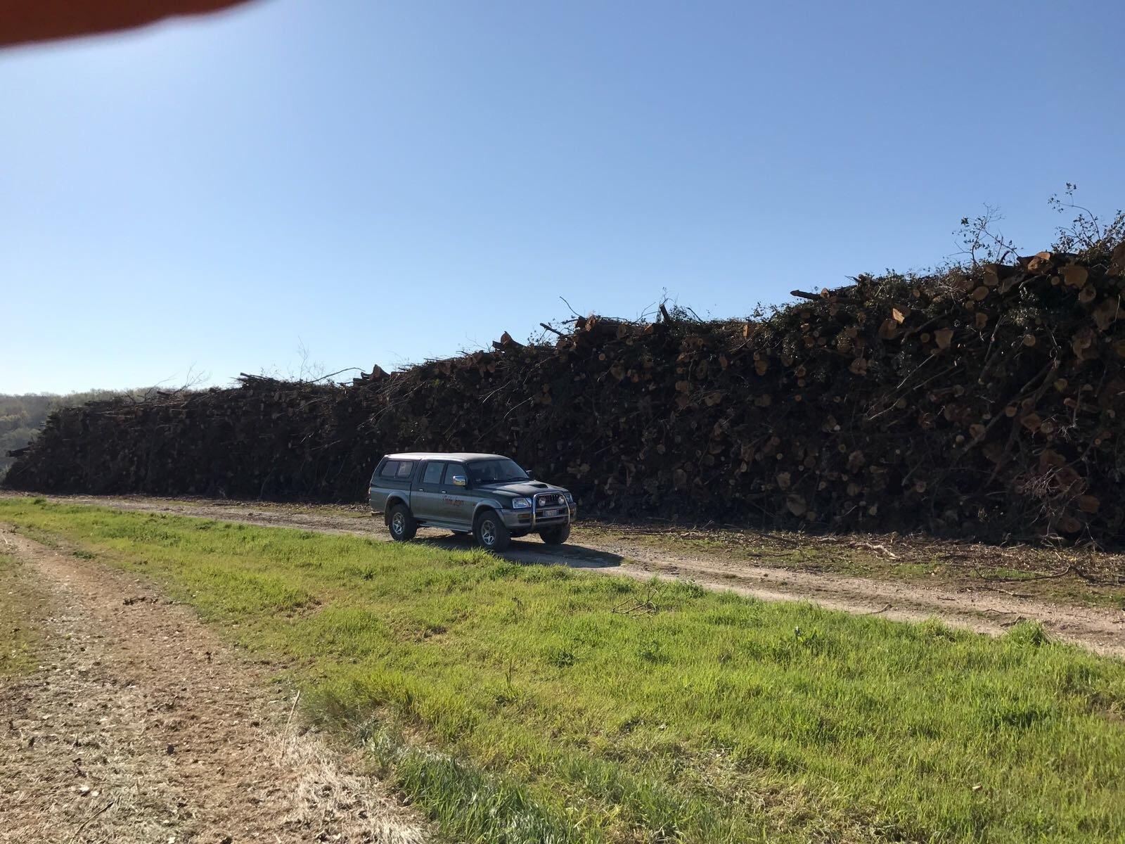 macchina con legna