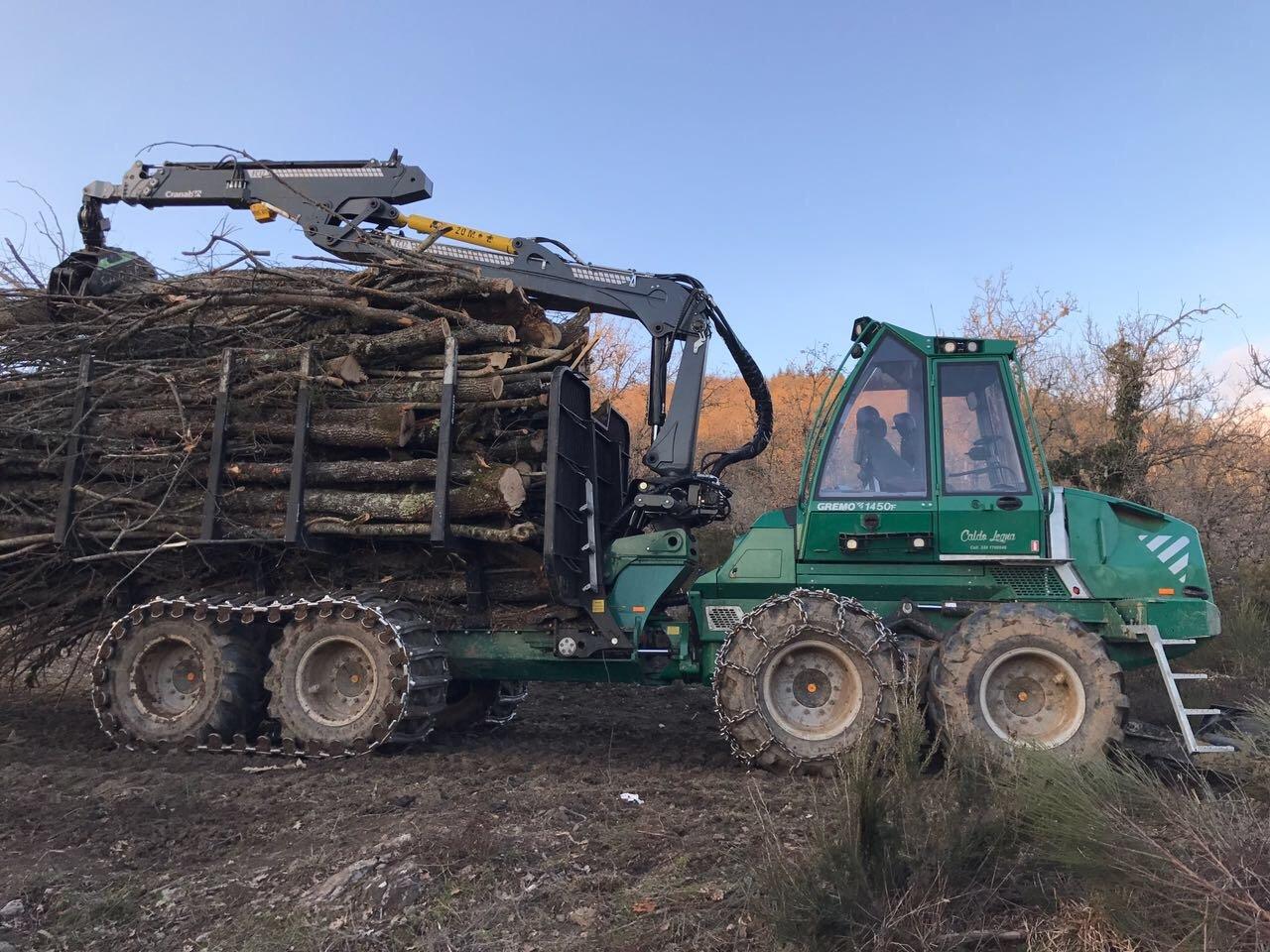 gru con legna