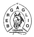 BERGAGLIO CORRIERE-LOGO