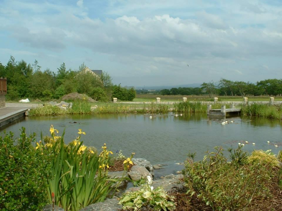 big garden pond