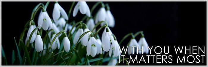 Purple petals close up - AL & G Abbott Funeral Directors | Bedford, Milton Keynes