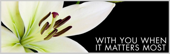 Close up of a lily on a dark background - AL & G Abbott Funeral Directors | Bedford, Milton Keynes