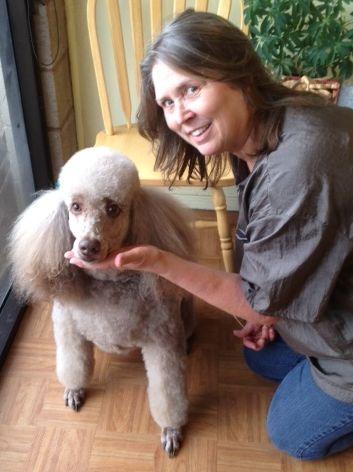 Dog groomer Elk Grove