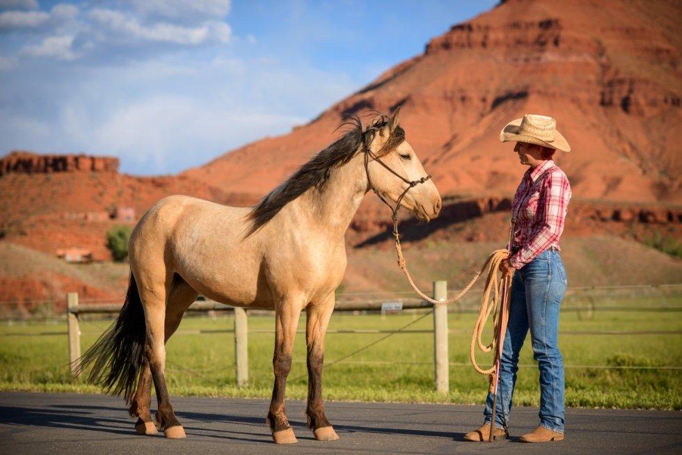 i cavalli di sorrel river ranch