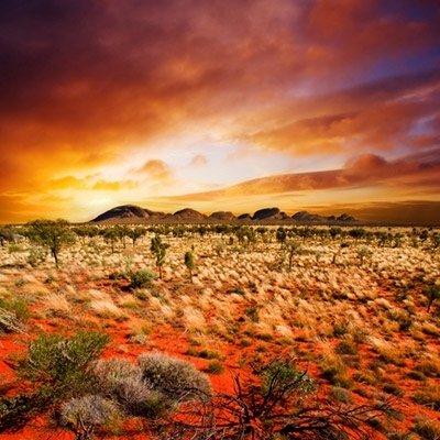 parchi australia