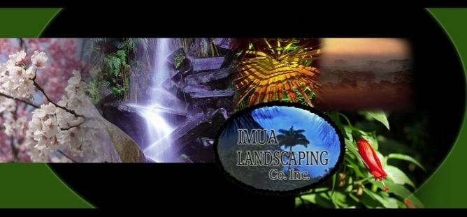 Imua Landscaping collage with healthy plants and waterfall