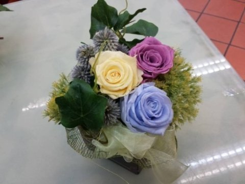 rosa tea, viola e blu