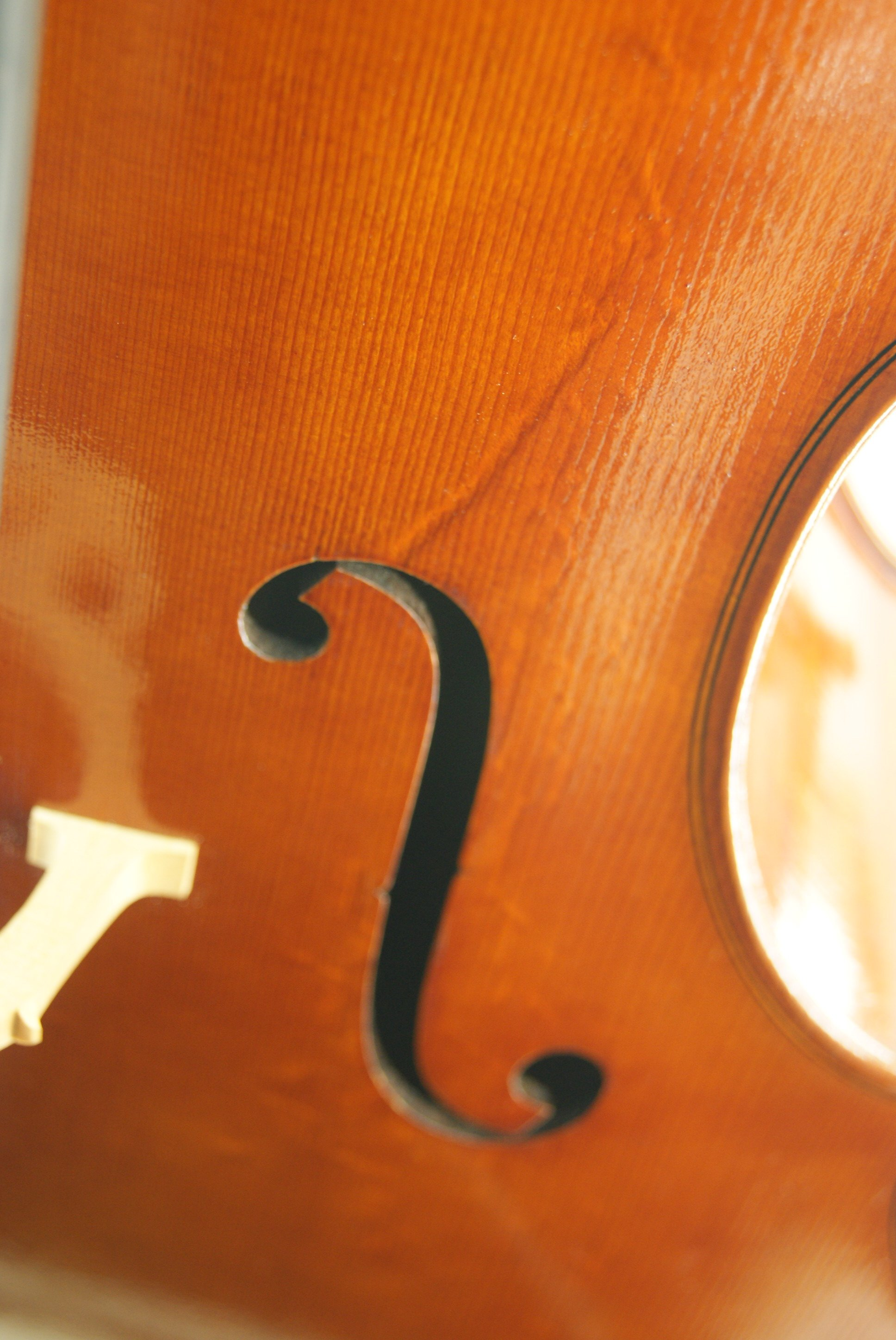 'f' hole of new cello modelled on Pietro Rogeri