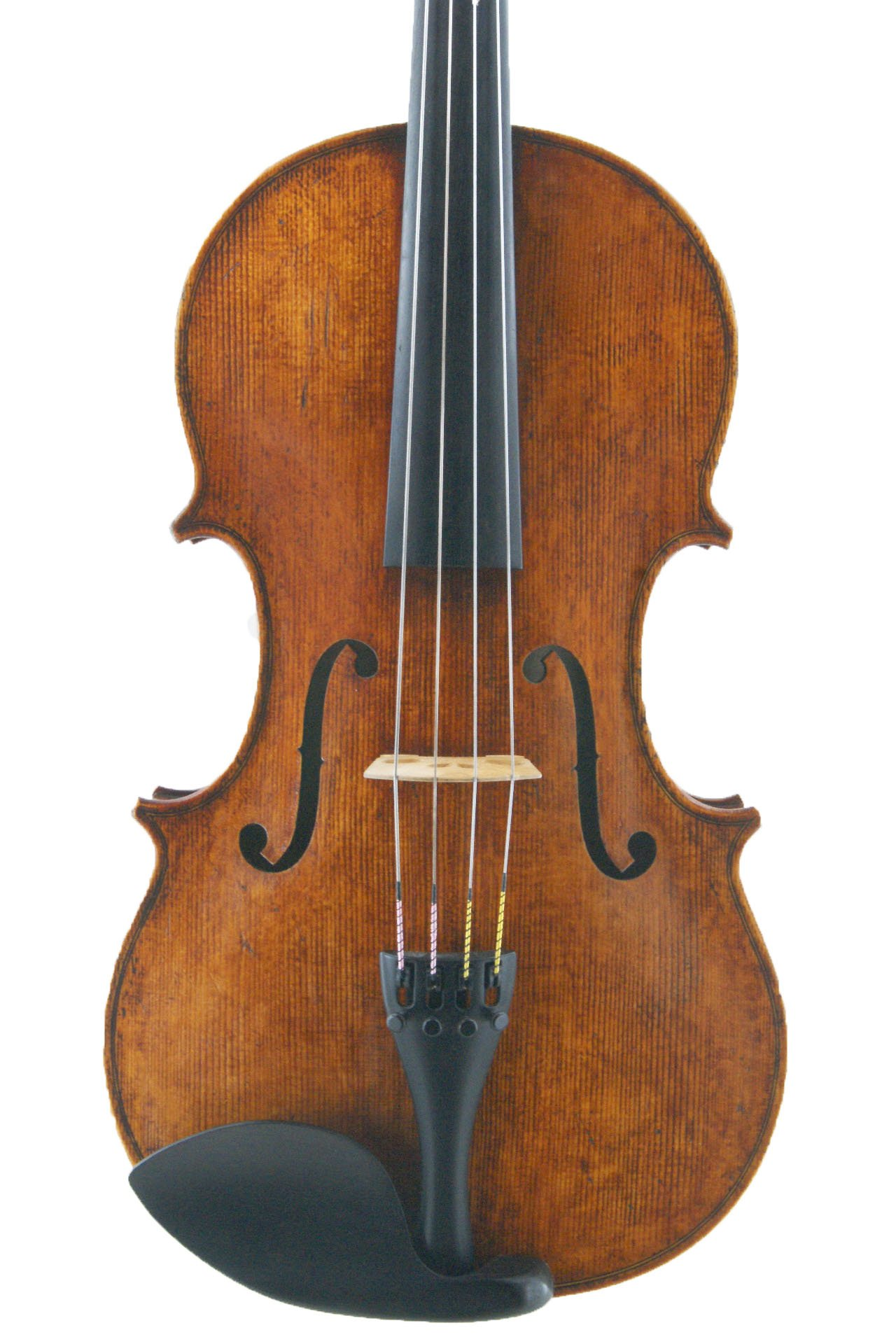 front of new viola modelled on Andrea Guarneri