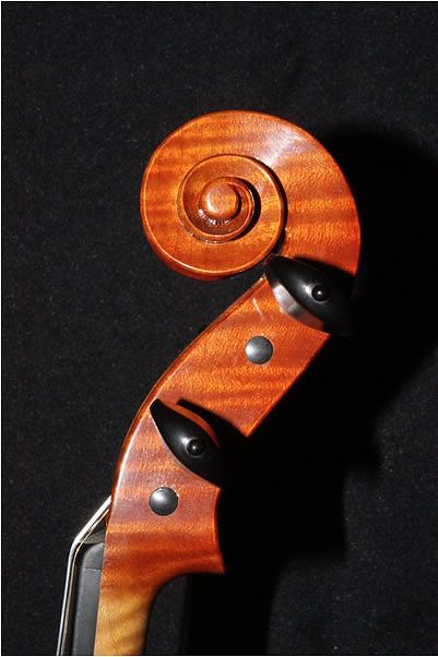 Violin Scroll Stradivari Milanolo Model