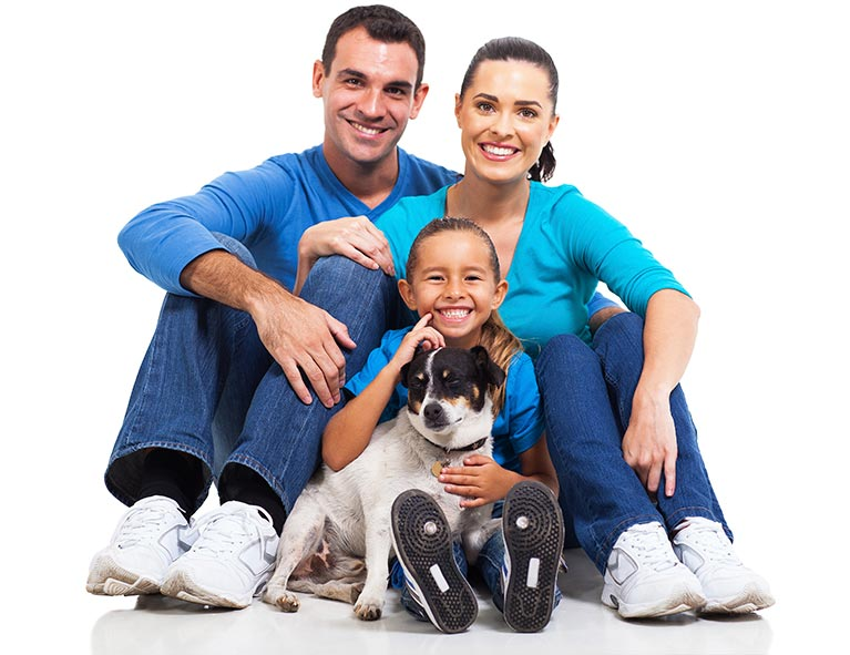 Pet Microchipping Services