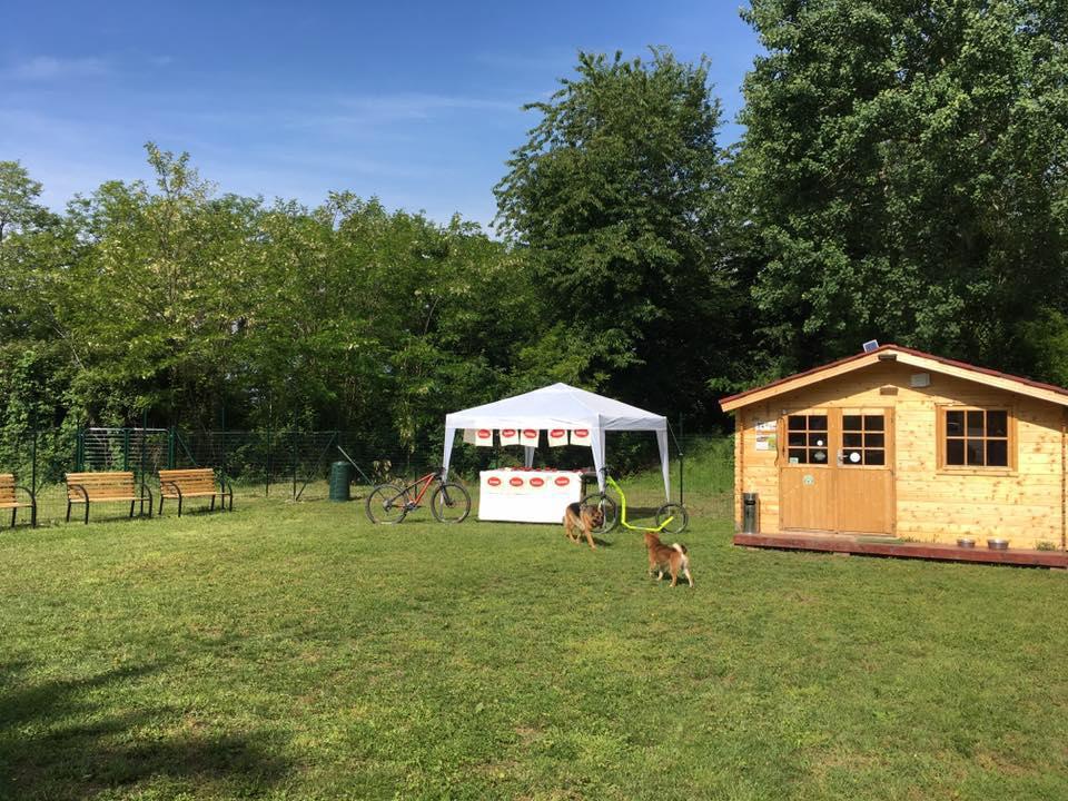 una casetta di legno, due cani e uno stand all'aperto