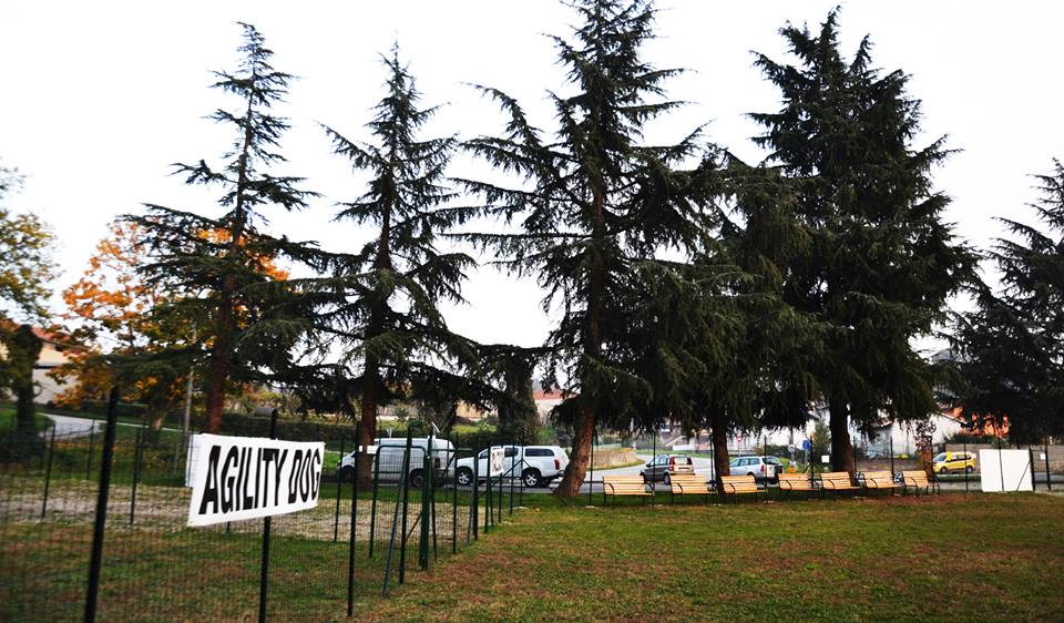 un recinto con scritto Agility Dog e dei pini
