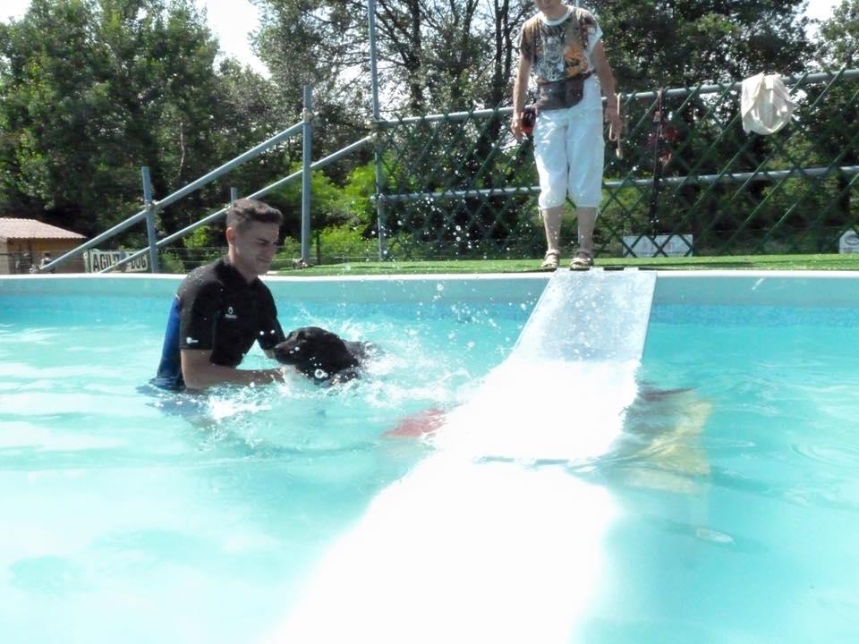 un ragazzo con un cane che nuota in una piscina