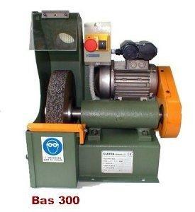 bas300
