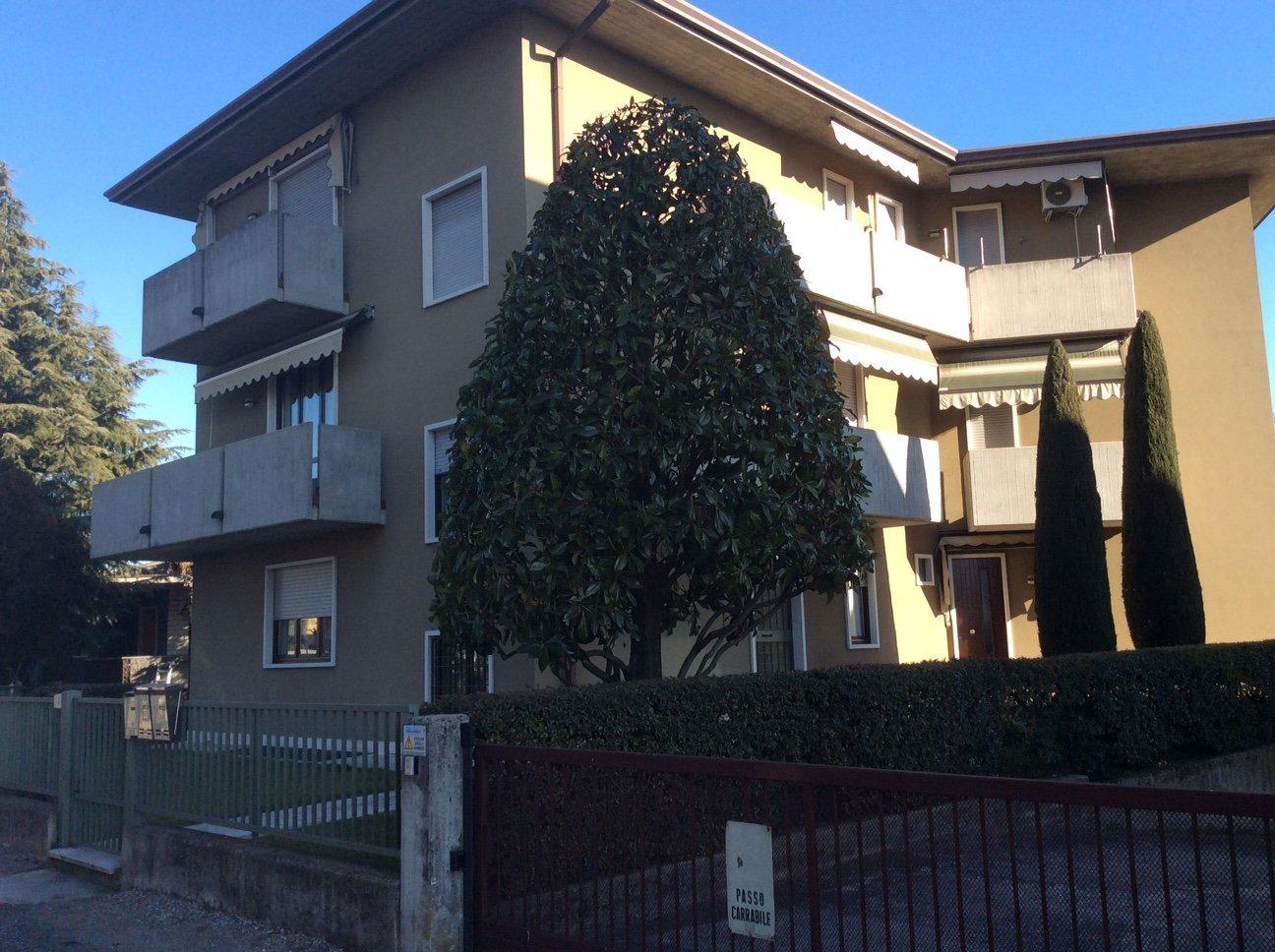 palazzo beige con albero davanti