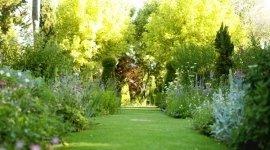 noleggio piante, noleggio fiori, impianti di irrigazione