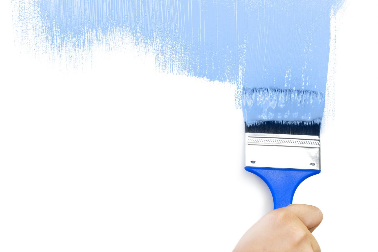 Performing painting services in Whangarei