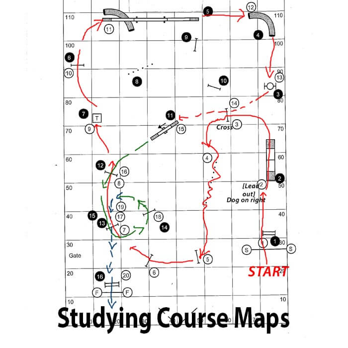 Studying dog agility course maps