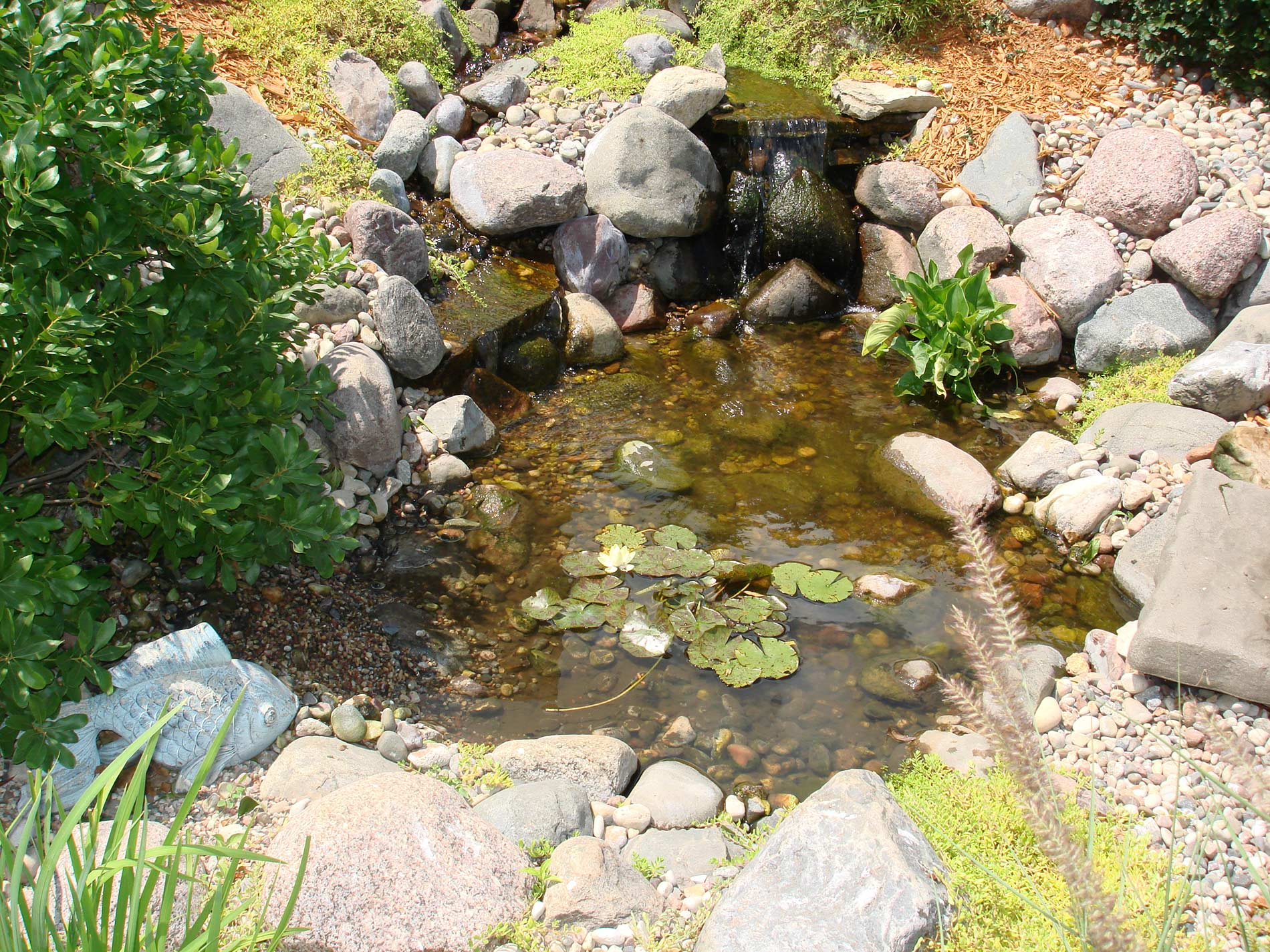 Add water features to your landscape