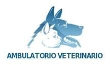 VETSTUDIO VETERINARIO - logo
