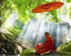 cultura zen
