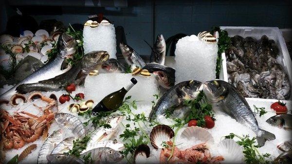 Il pesce