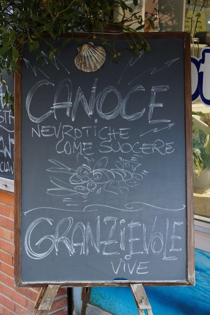canoce