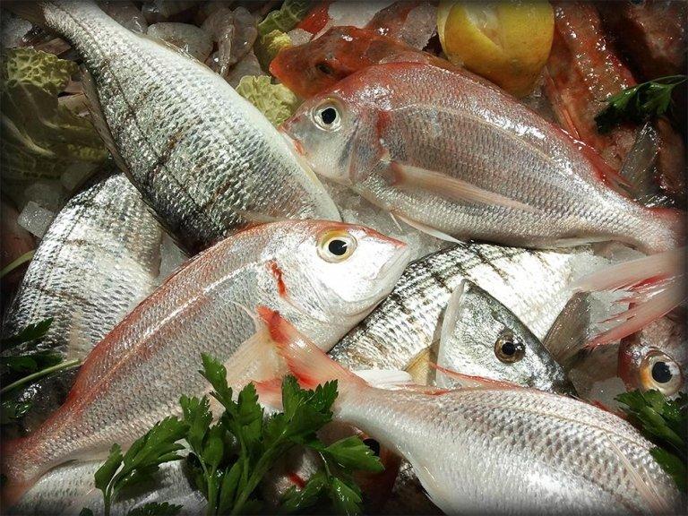 Pesce pescato fresco