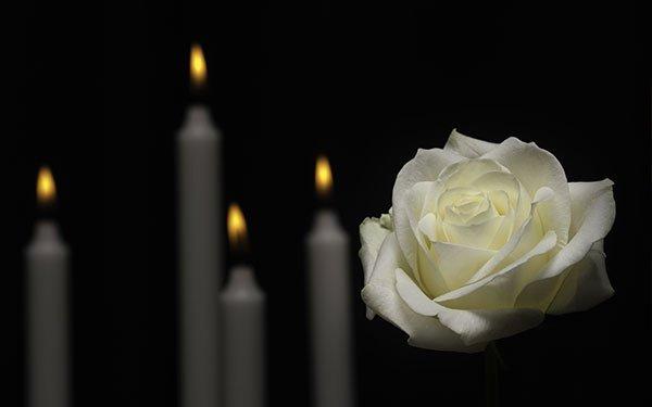 quattro candele e una rosa bianca