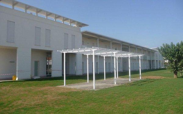 Una copertura sorretta da dei pali in un'area con un prato e degli alberi