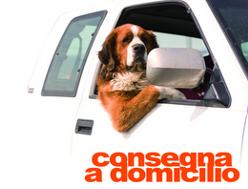 vendita prodotti ed alimenti per animali domestici