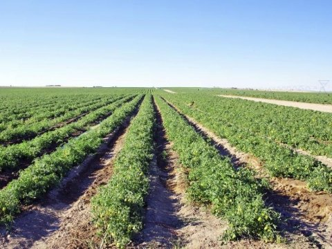 Ferramenta EffeBi Agricoltura