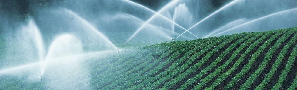 sistemi irrigazione polistena