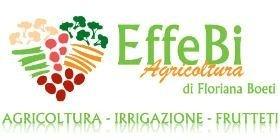effebi agricoltura polistena logo