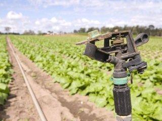 irrigazione campi reggio calabria