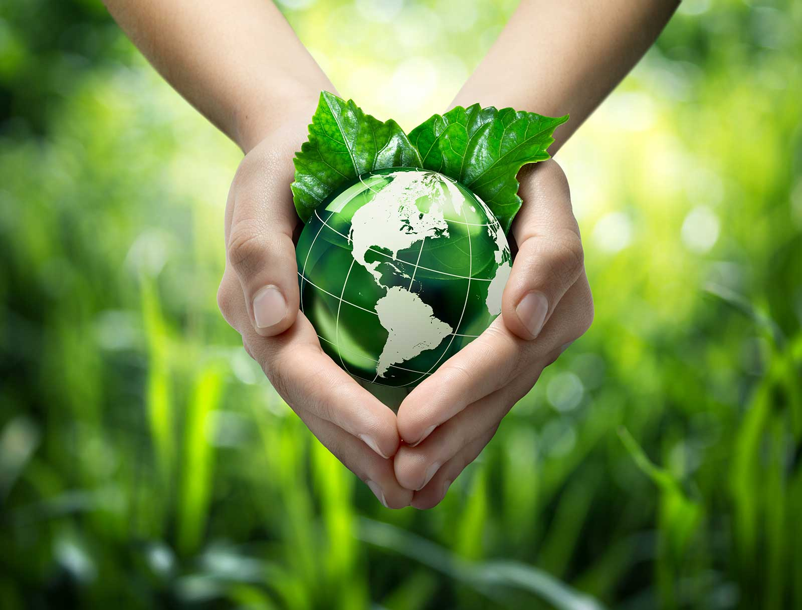 Green-planet-in-your-heart-hands