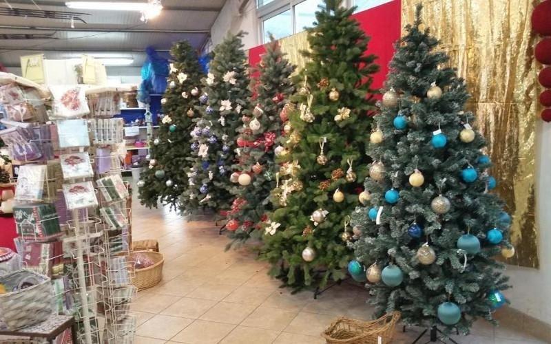 vendita alberi di Natale