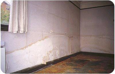 Rising damp damage on the wallpaper