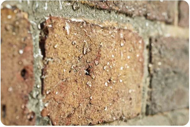 Masonry protection - dry walls