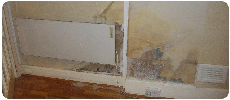 rising damp symptoms - damaged wall