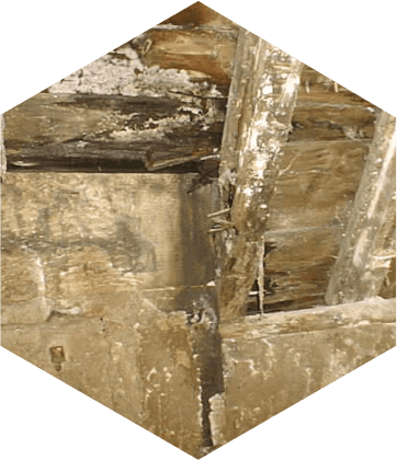 Damage caused by wet rot