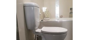 affordable plumbing nt toilet interior