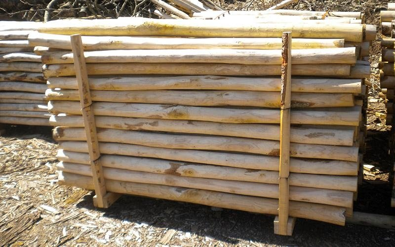 Pali in legno per sentieri
