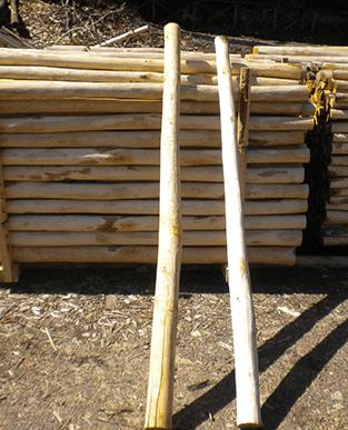 fornitura pali di castagno