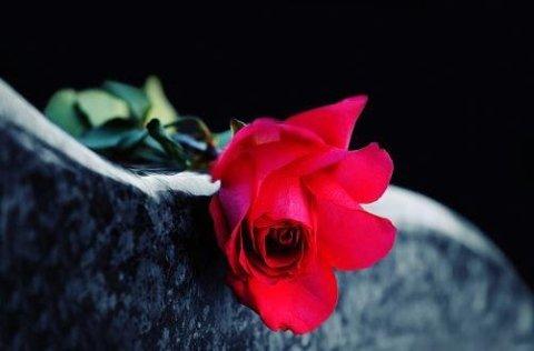 lapide con fiore