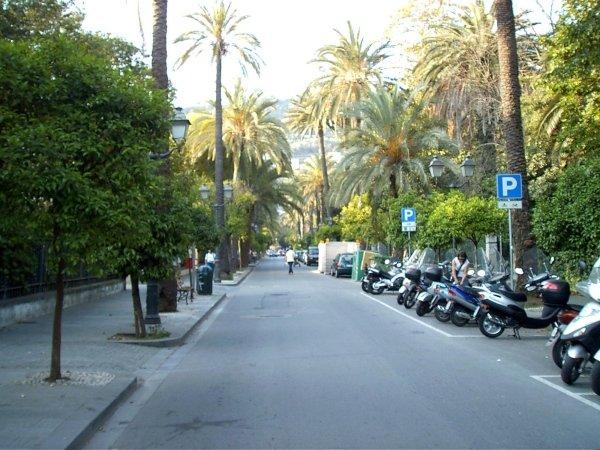Viale delle Palme Genova Nervi