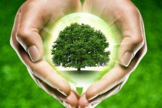servizi ecologici
